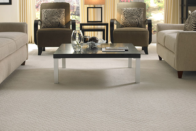 Mohawk carpeting from Wilk Furniture & Design in Random Lake