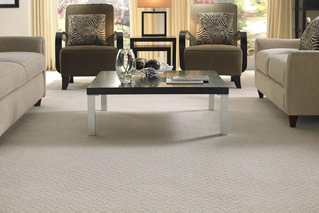 Mohawk carpeting from Wilk Furniture & Design in Random Lake